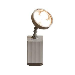 RTHAV - Fuel Lighting Angle Light Wash LED light Rental
